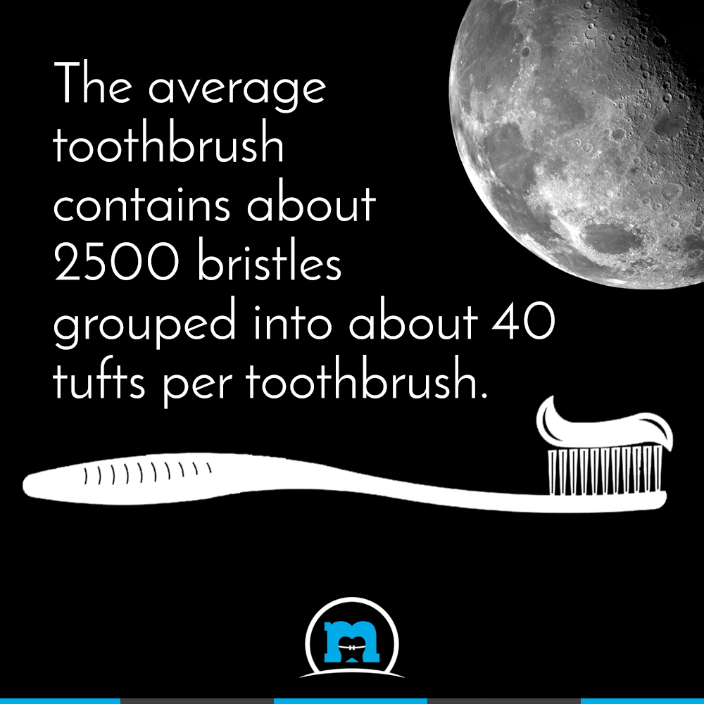 Do you know how many Bristles your Toothbrush Contains?